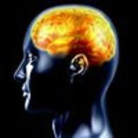 Psychologie des couleurs : créez un cadre favorable à la formation